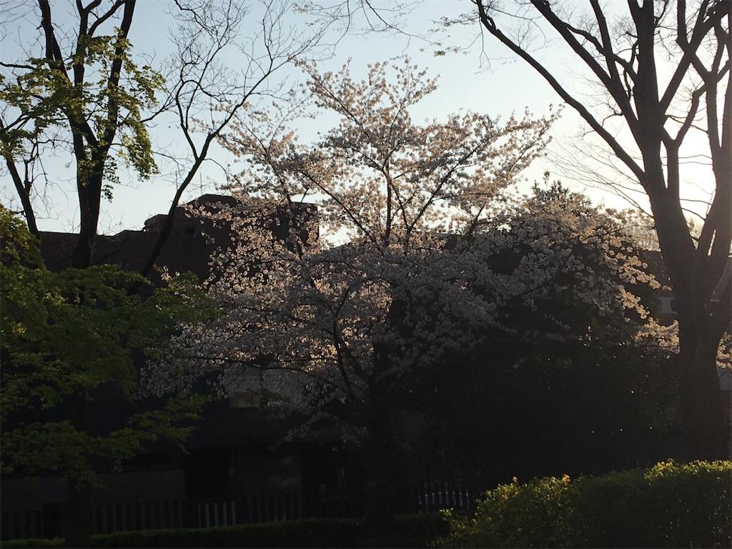 f:id:TokuheiKumagai:20200402194152j:image