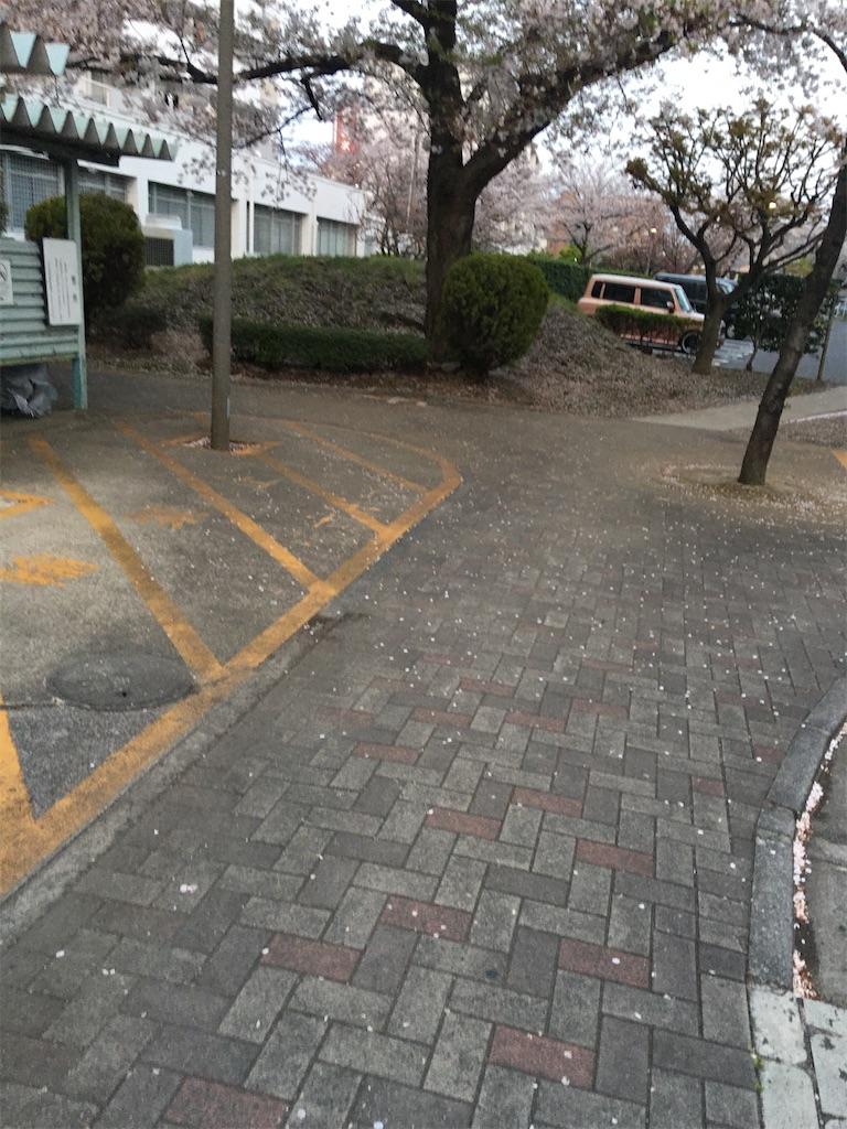 f:id:TokuheiKumagai:20200403212112j:image