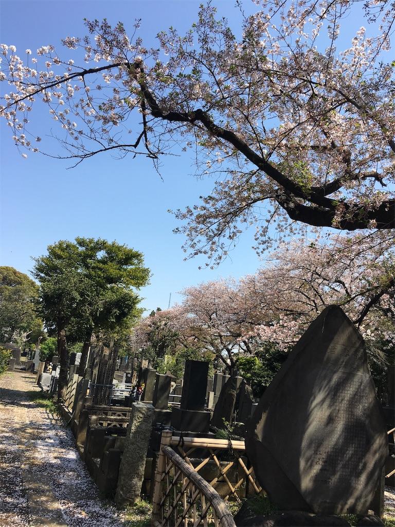 f:id:TokuheiKumagai:20200404212307j:image