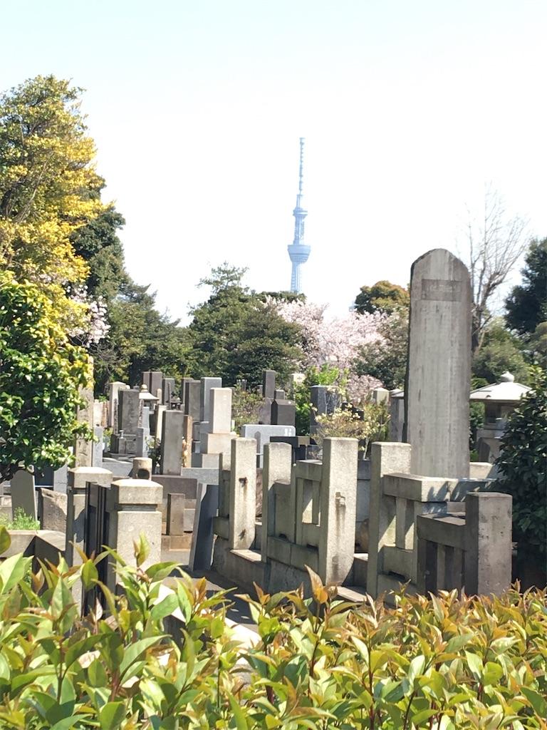 f:id:TokuheiKumagai:20200404212319j:image