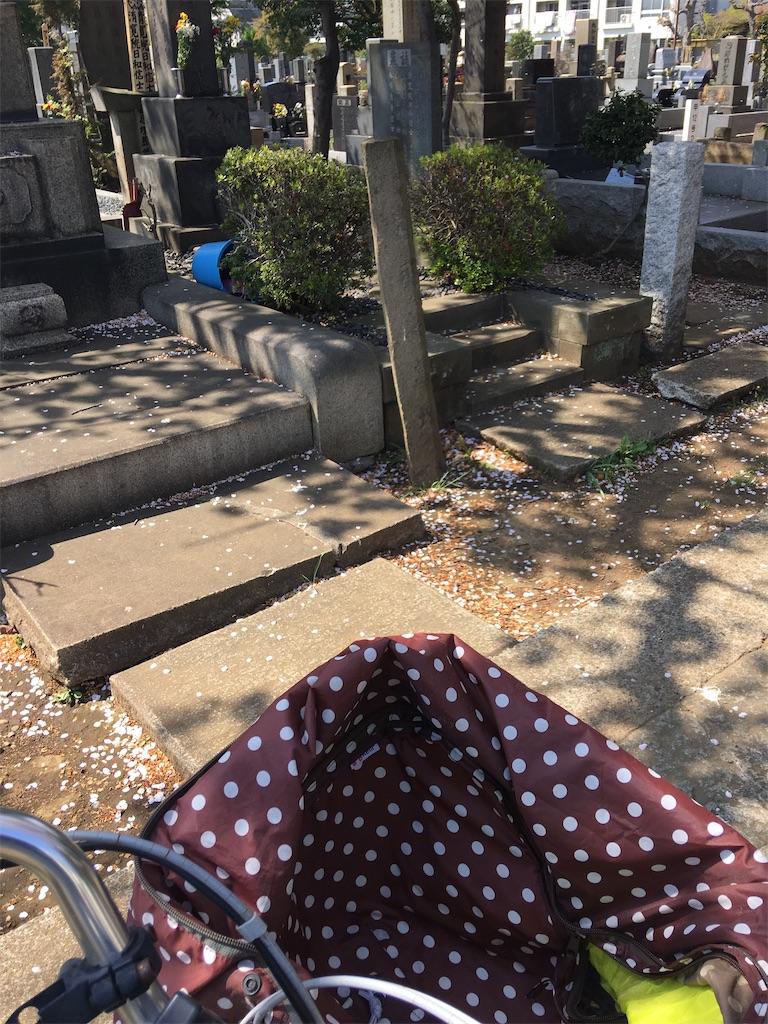 f:id:TokuheiKumagai:20200404212324j:image