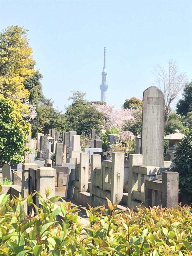 f:id:TokuheiKumagai:20200404212344j:image
