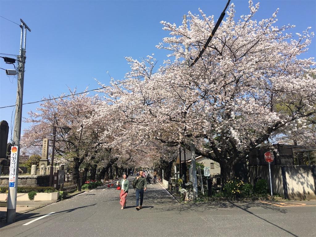 f:id:TokuheiKumagai:20200404212348j:image
