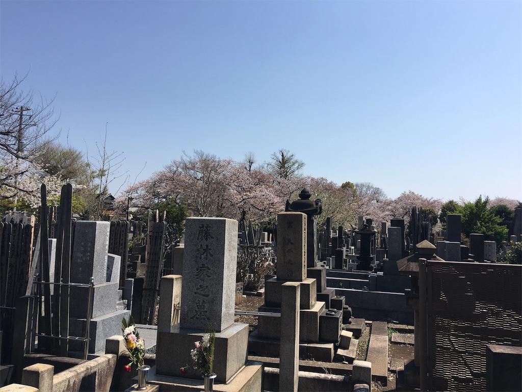 f:id:TokuheiKumagai:20200404212357j:image