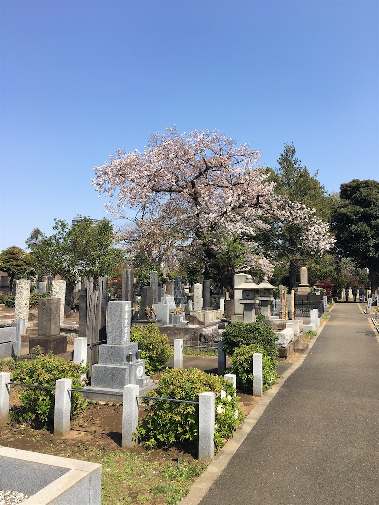 f:id:TokuheiKumagai:20200404212418j:image