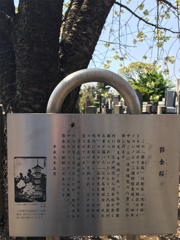 f:id:TokuheiKumagai:20200404212428j:image