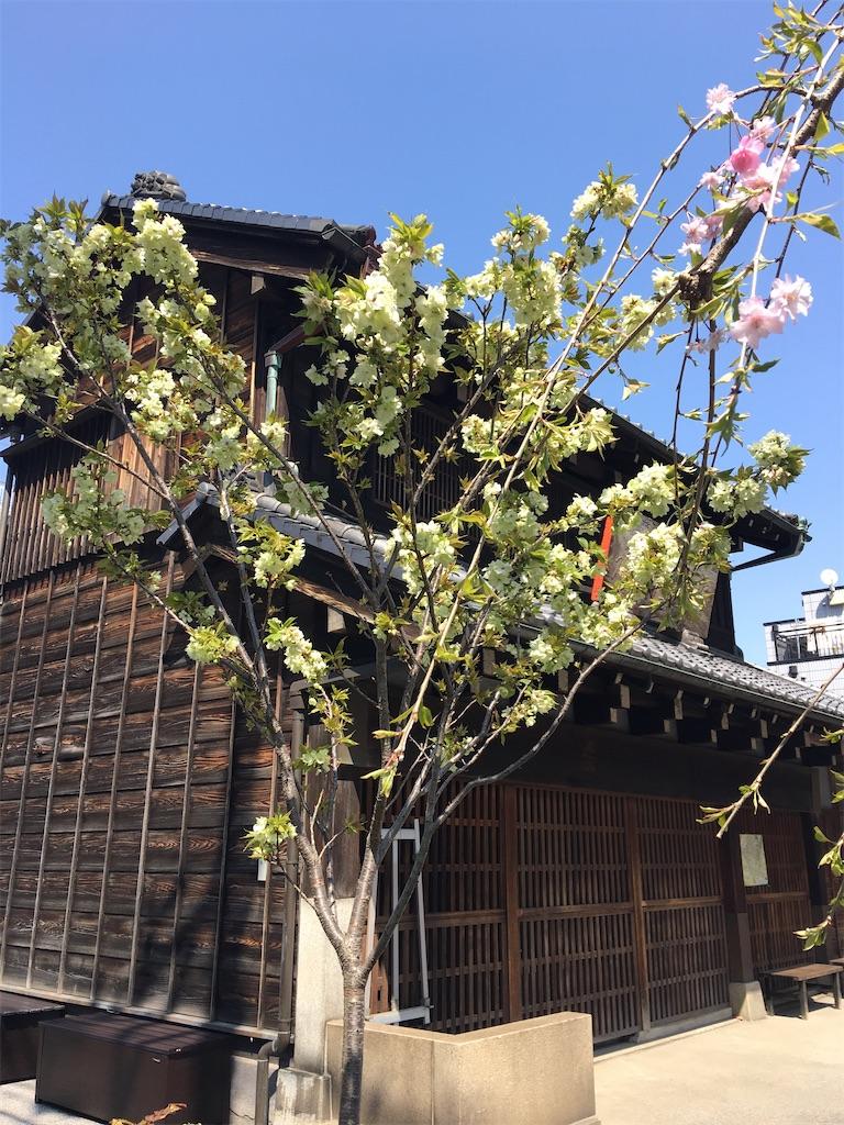 f:id:TokuheiKumagai:20200404212523j:image