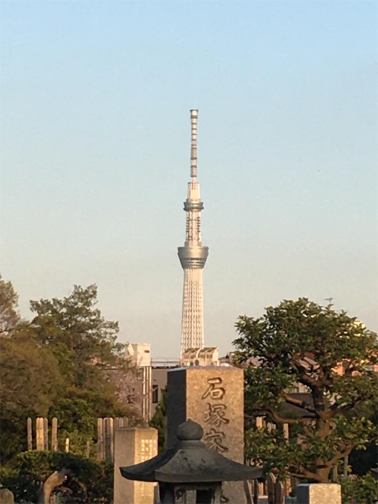 f:id:TokuheiKumagai:20200406223212j:image