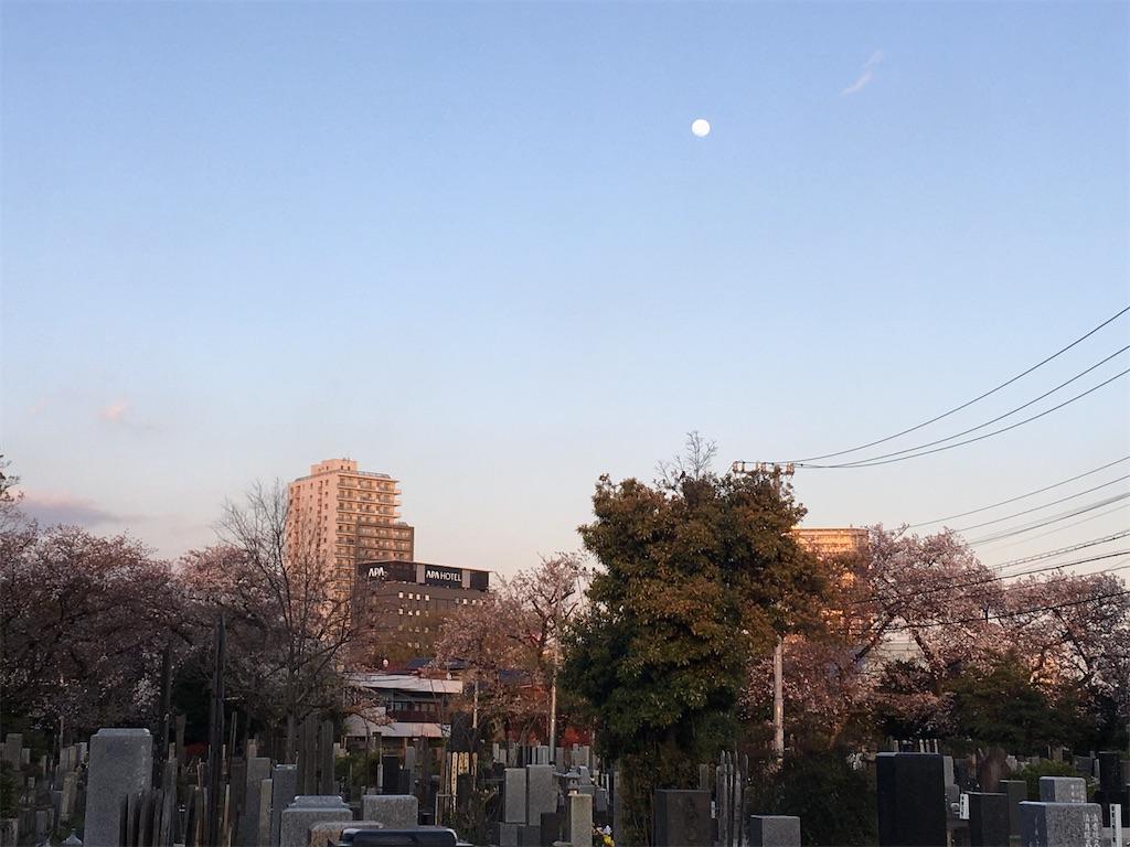 f:id:TokuheiKumagai:20200406223219j:image