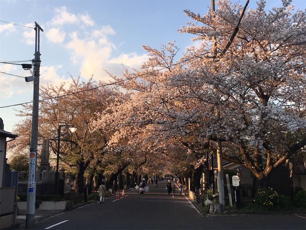 f:id:TokuheiKumagai:20200406223226j:image