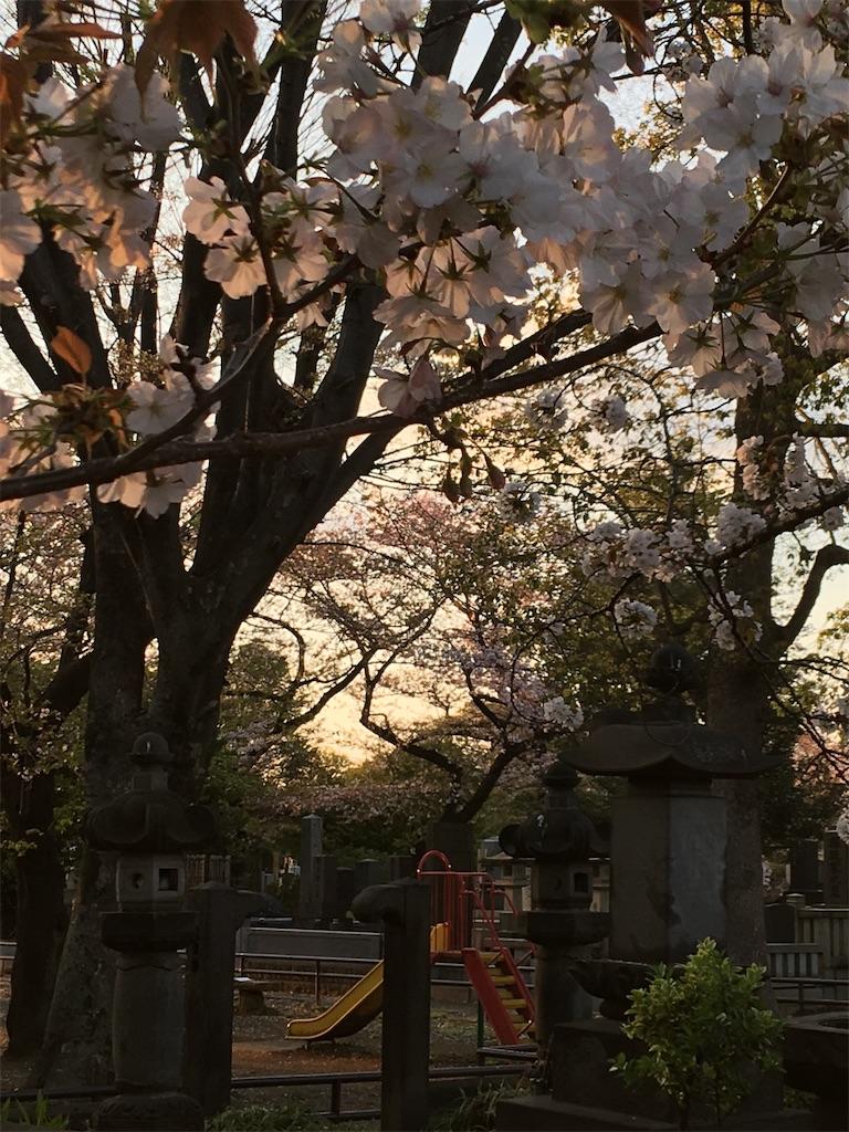 f:id:TokuheiKumagai:20200406223329j:image