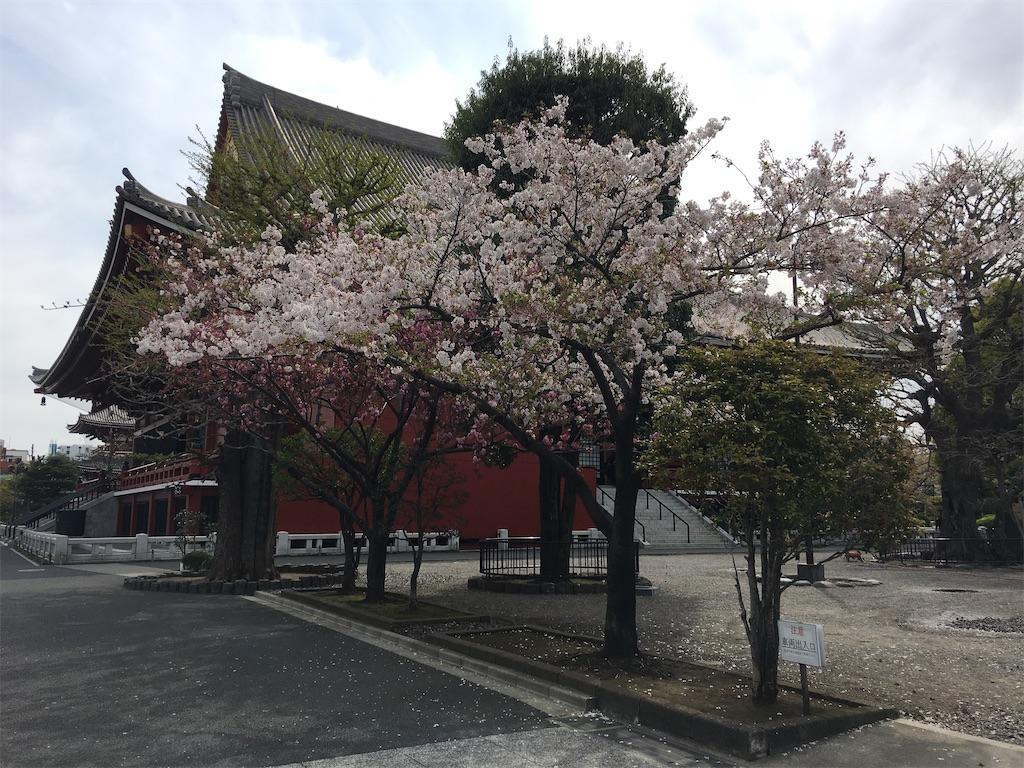 f:id:TokuheiKumagai:20200407190125j:image