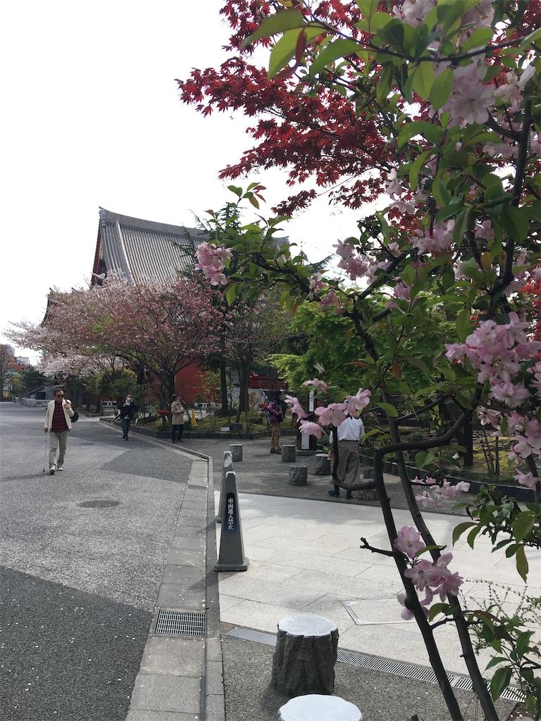 f:id:TokuheiKumagai:20200407190155j:image