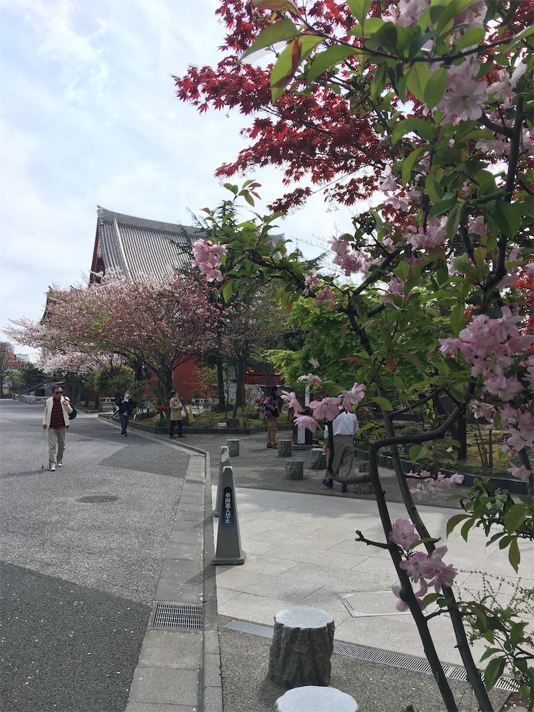 f:id:TokuheiKumagai:20200407190334j:image
