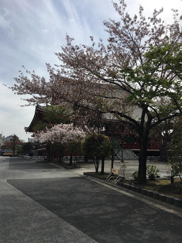 f:id:TokuheiKumagai:20200407190337j:image