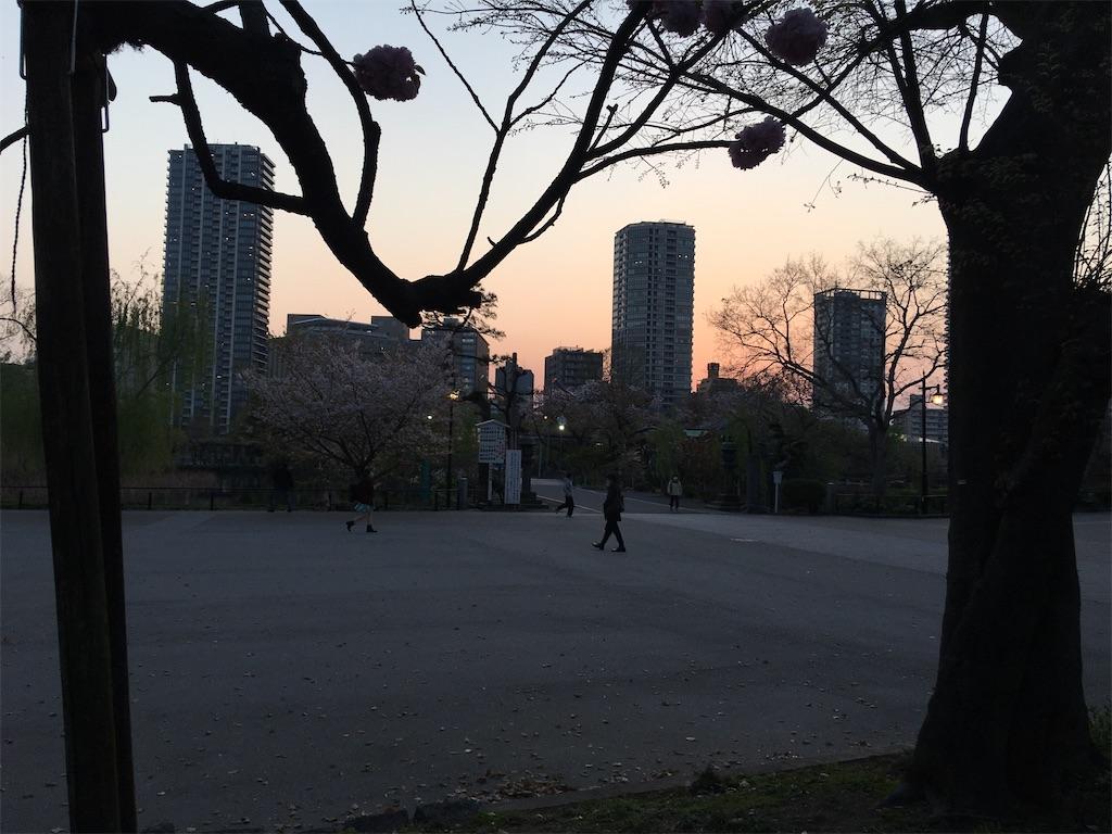 f:id:TokuheiKumagai:20200408194213j:image