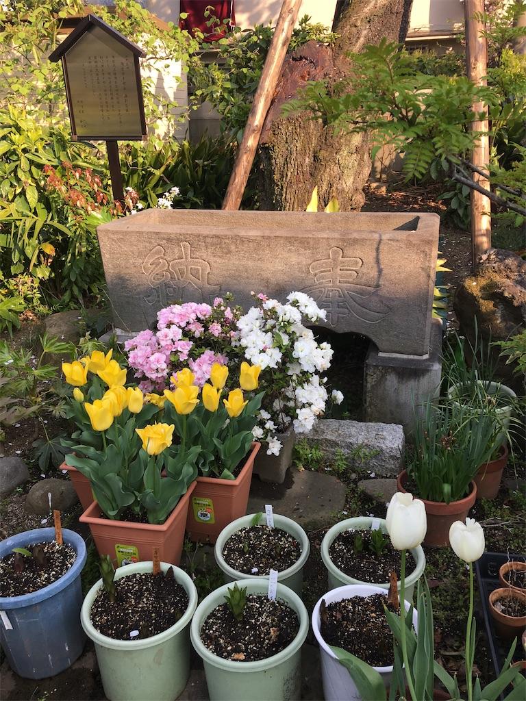 f:id:TokuheiKumagai:20200408194254j:image