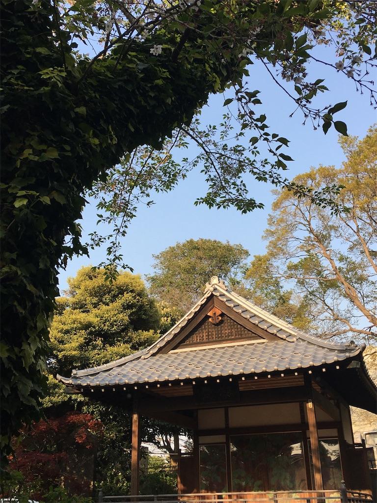 f:id:TokuheiKumagai:20200408194353j:image