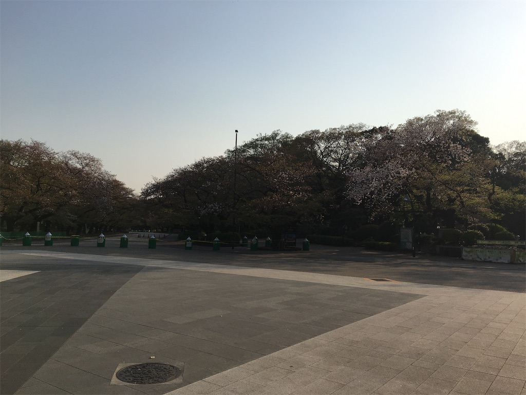 f:id:TokuheiKumagai:20200408194400j:image