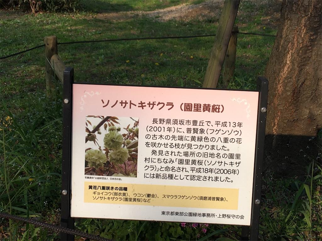f:id:TokuheiKumagai:20200408194418j:image