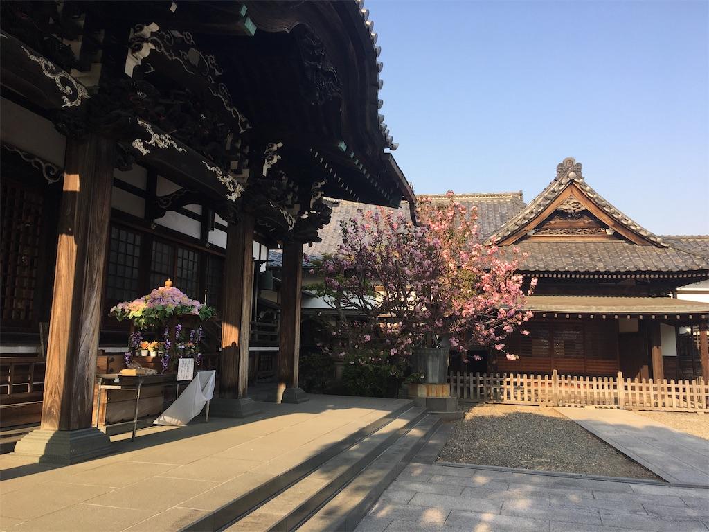 f:id:TokuheiKumagai:20200408194531j:image