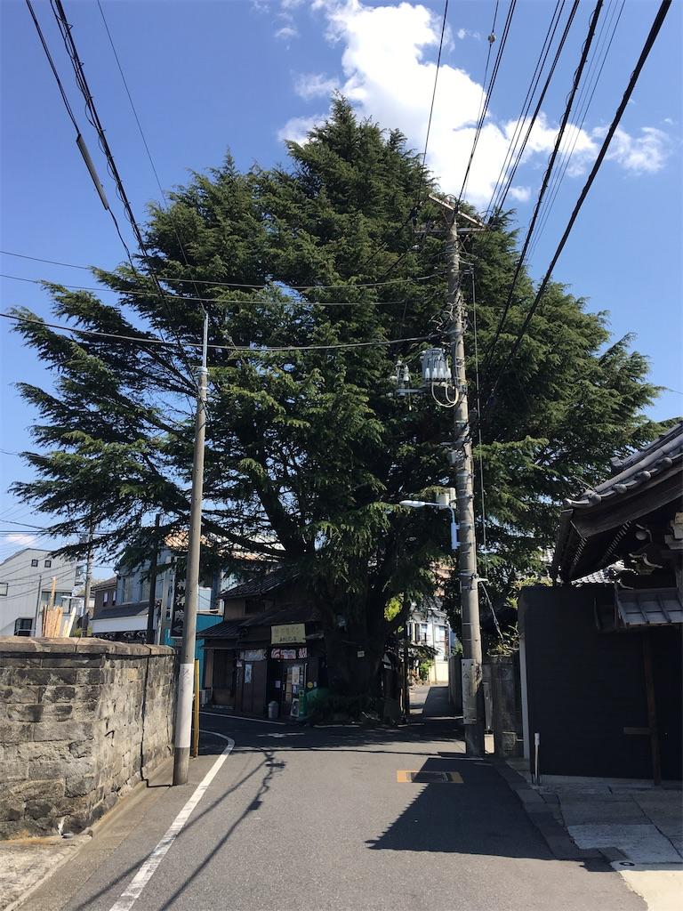 f:id:TokuheiKumagai:20200411221410j:image