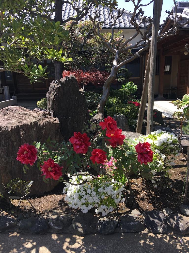 f:id:TokuheiKumagai:20200414213726j:image