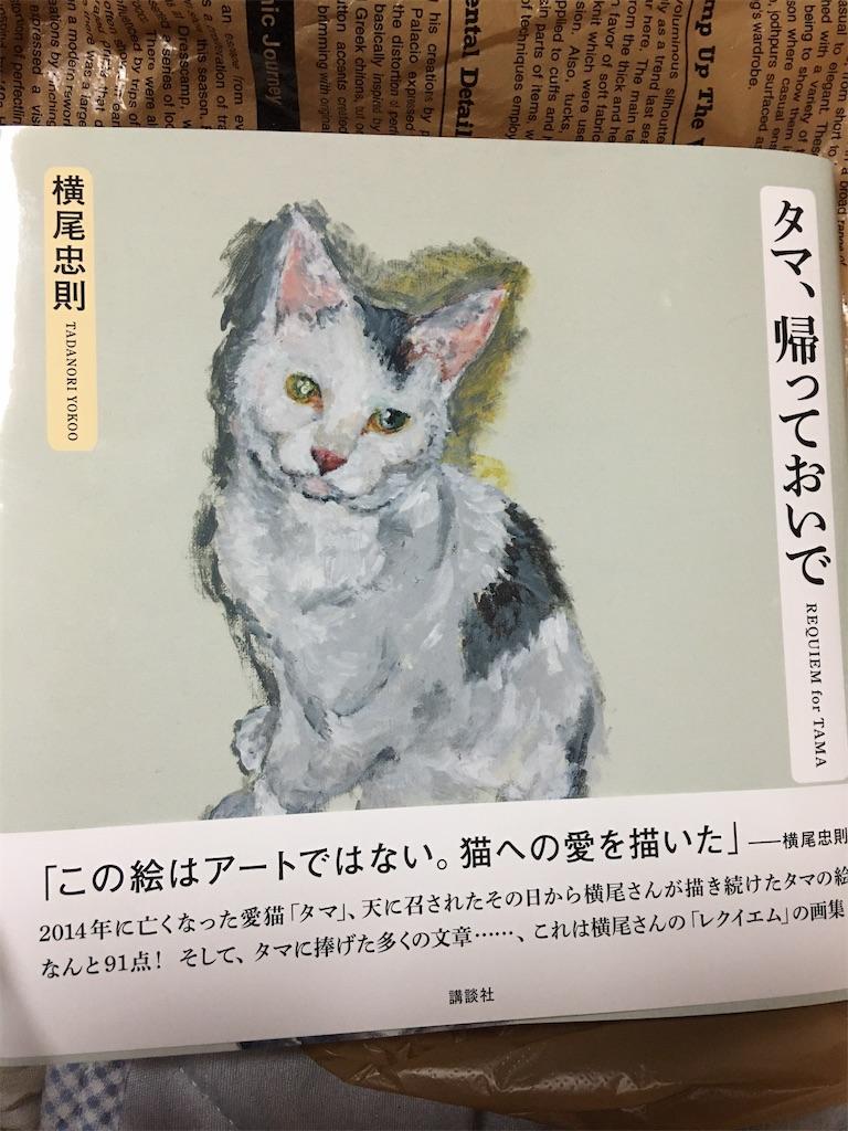 f:id:TokuheiKumagai:20200416224053j:image