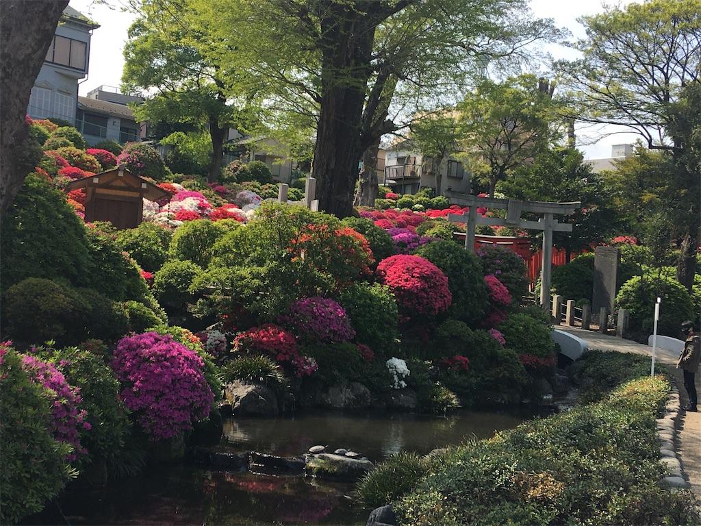 f:id:TokuheiKumagai:20200418230517j:image
