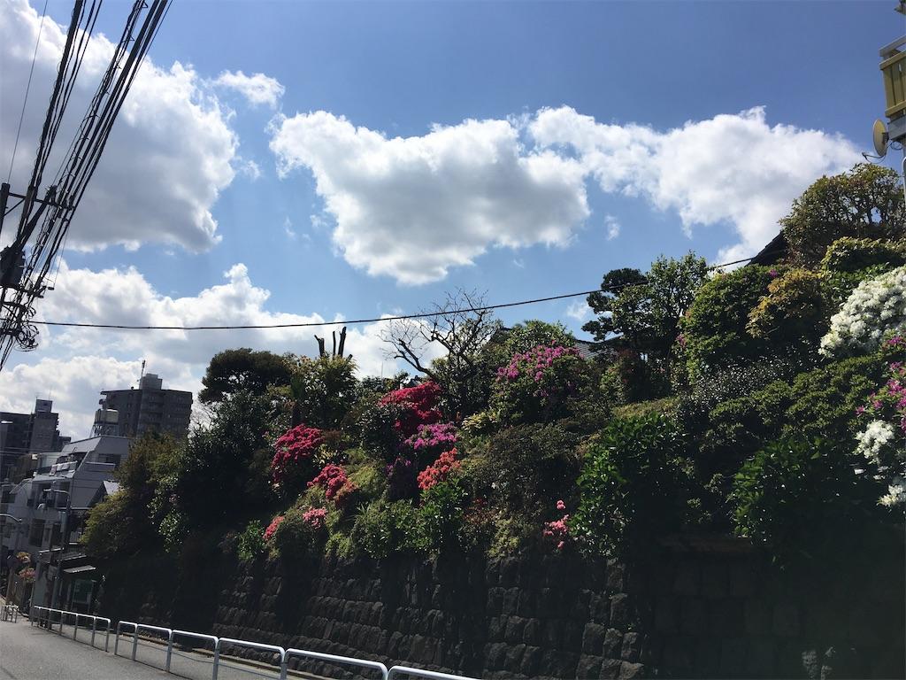 f:id:TokuheiKumagai:20200423235503j:image