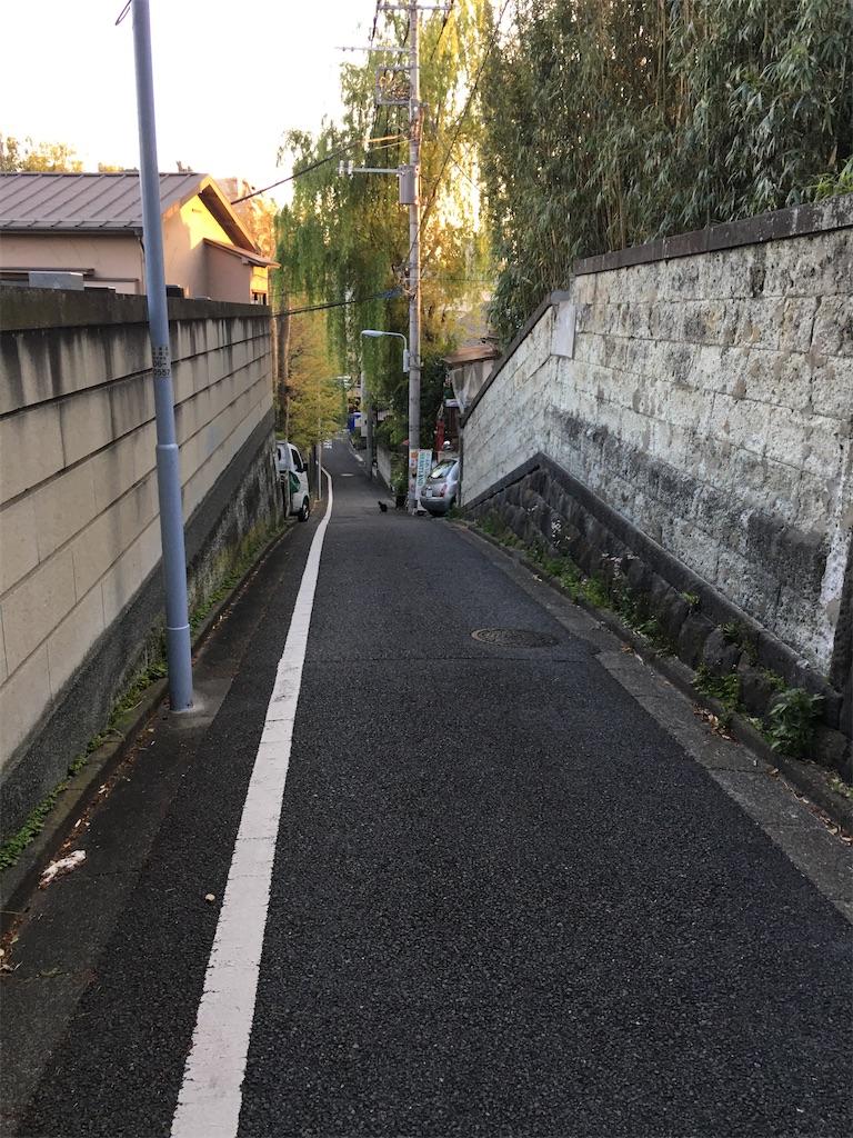 f:id:TokuheiKumagai:20200425222454j:image
