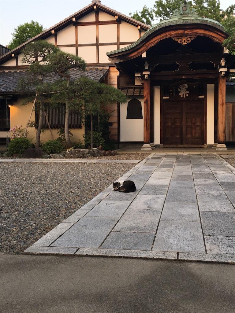 f:id:TokuheiKumagai:20200501194955j:image