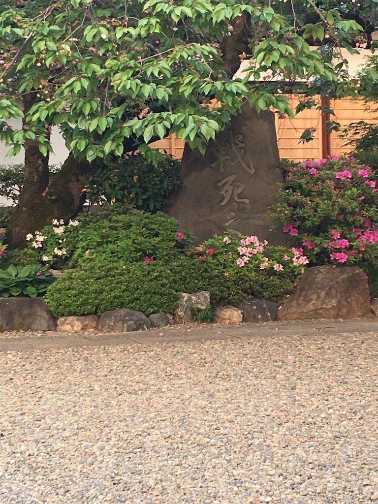 f:id:TokuheiKumagai:20200501195036j:image