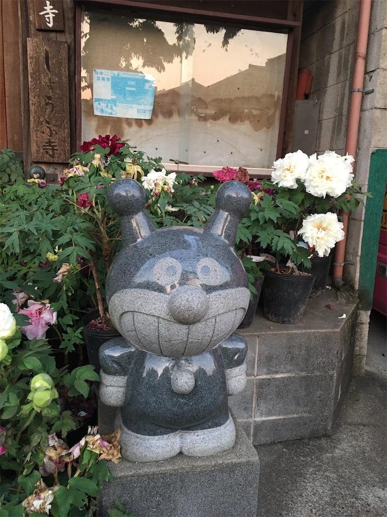 f:id:TokuheiKumagai:20200501195041j:image