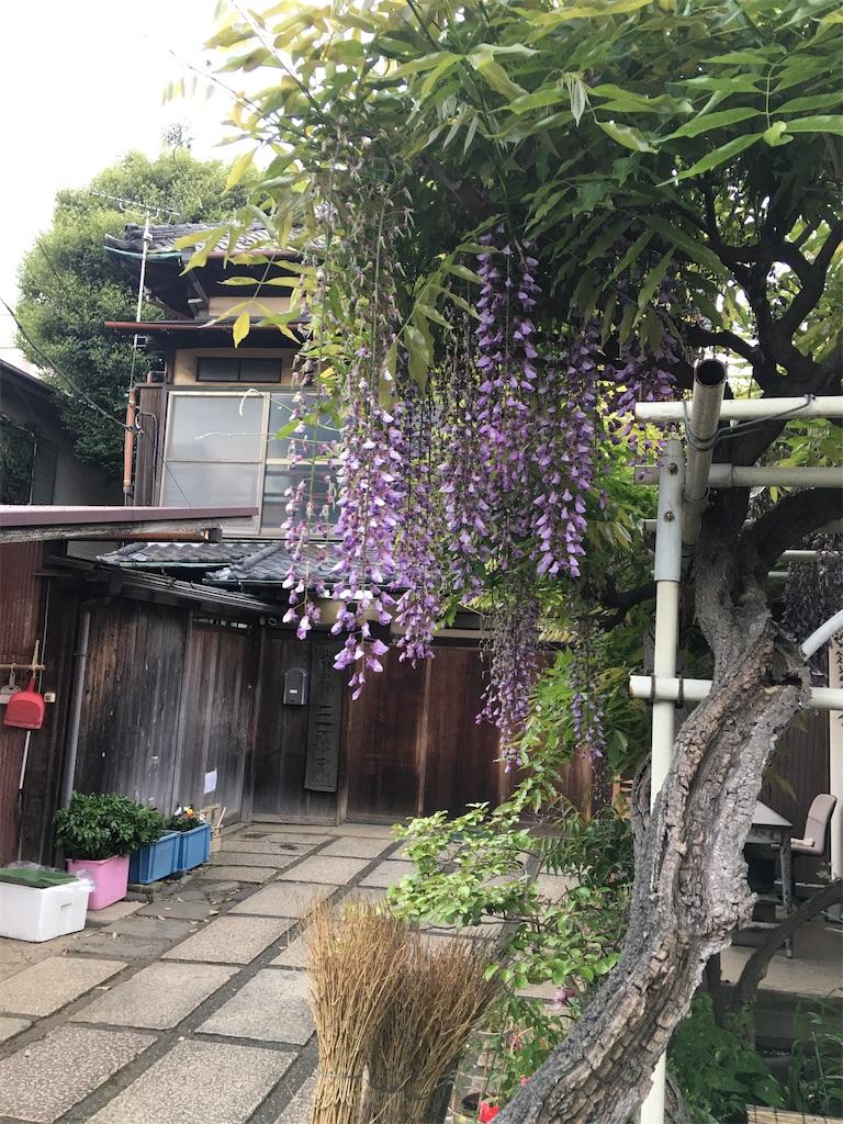 f:id:TokuheiKumagai:20200504222625j:image