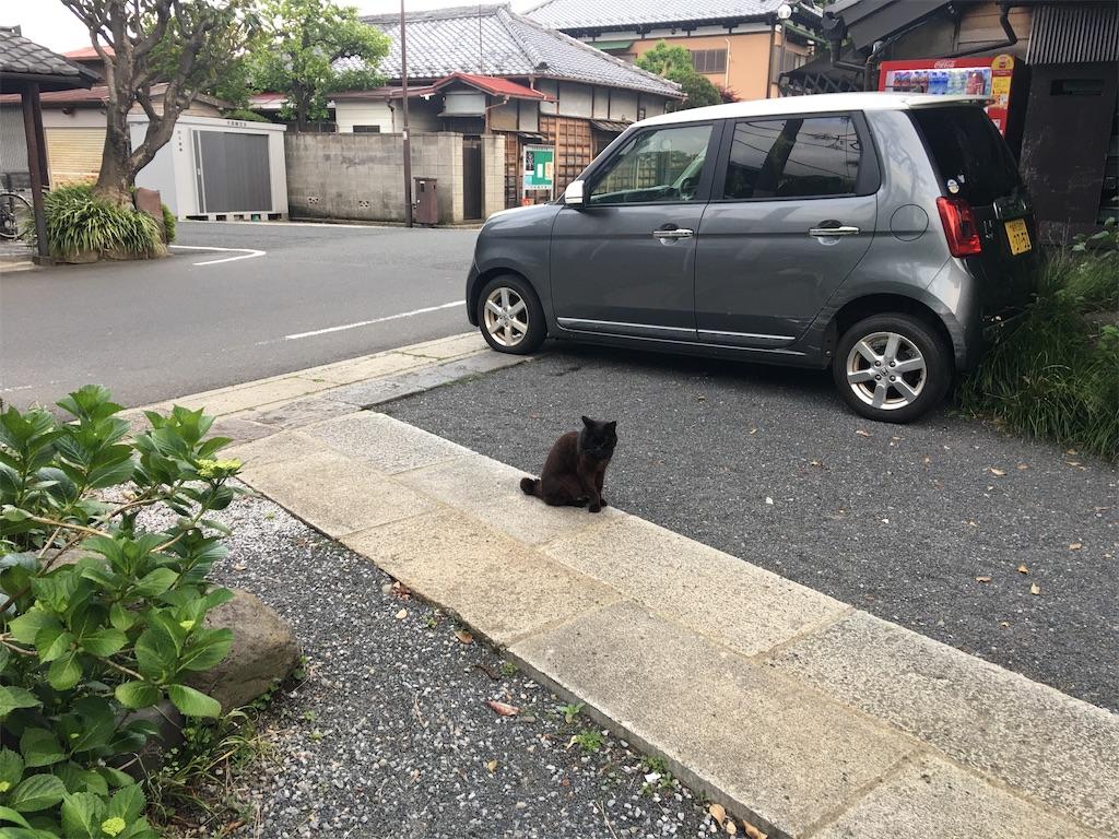 f:id:TokuheiKumagai:20200504222701j:image