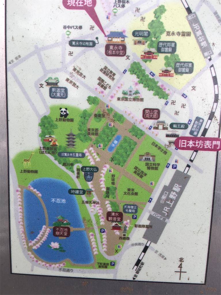 f:id:TokuheiKumagai:20200512174757j:image
