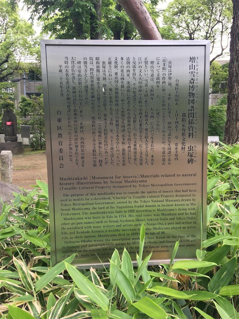 f:id:TokuheiKumagai:20200512174830j:image