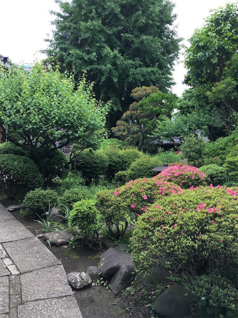 f:id:TokuheiKumagai:20200521181943j:image