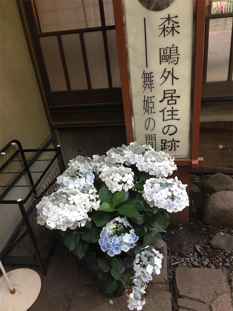 f:id:TokuheiKumagai:20200528202407j:image