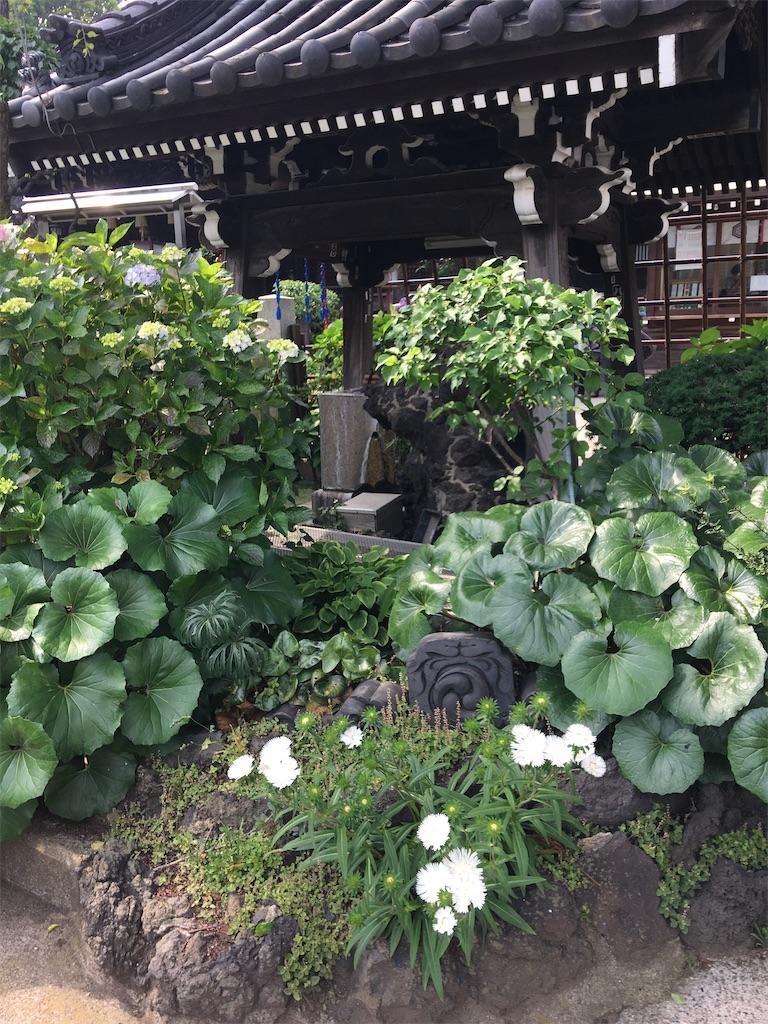f:id:TokuheiKumagai:20200604225058j:image