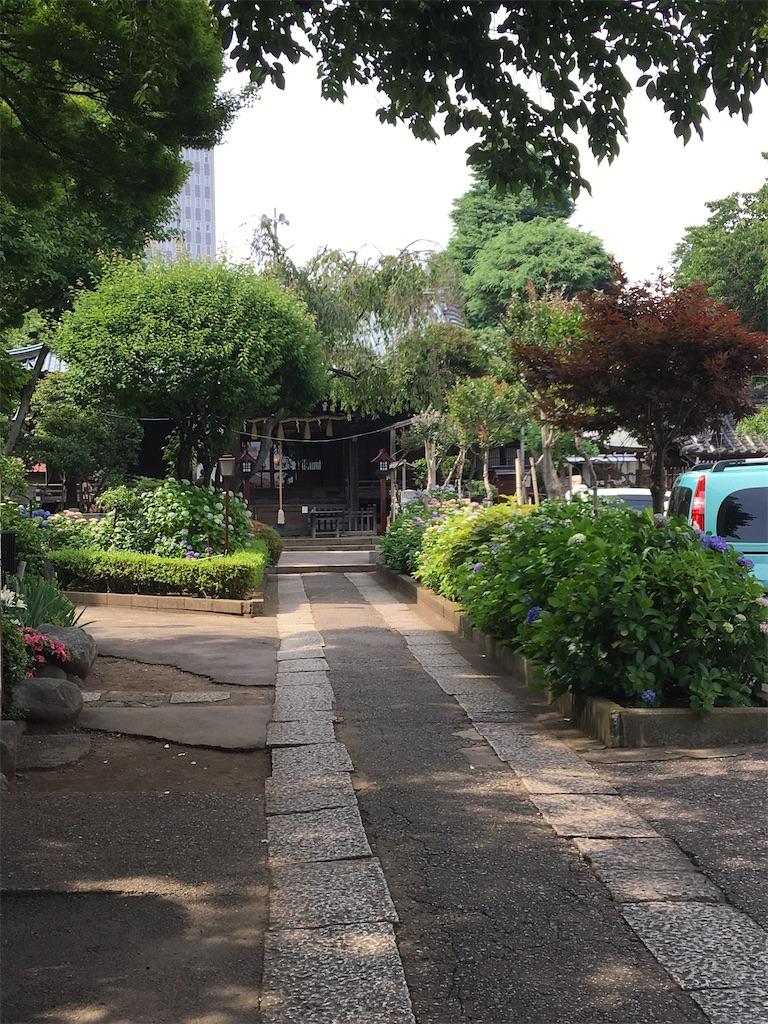 f:id:TokuheiKumagai:20200604225128j:image