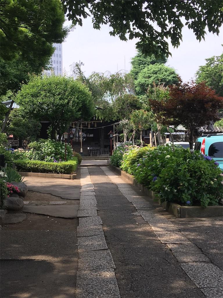 f:id:TokuheiKumagai:20200604225151j:image