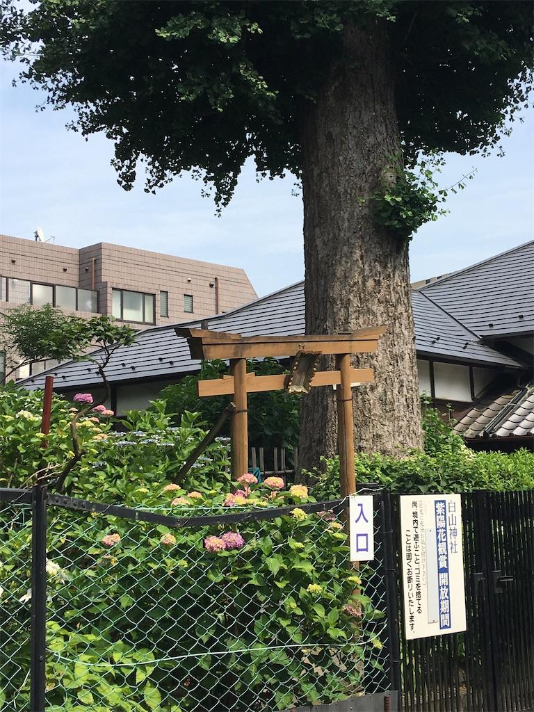 f:id:TokuheiKumagai:20200604225253j:image