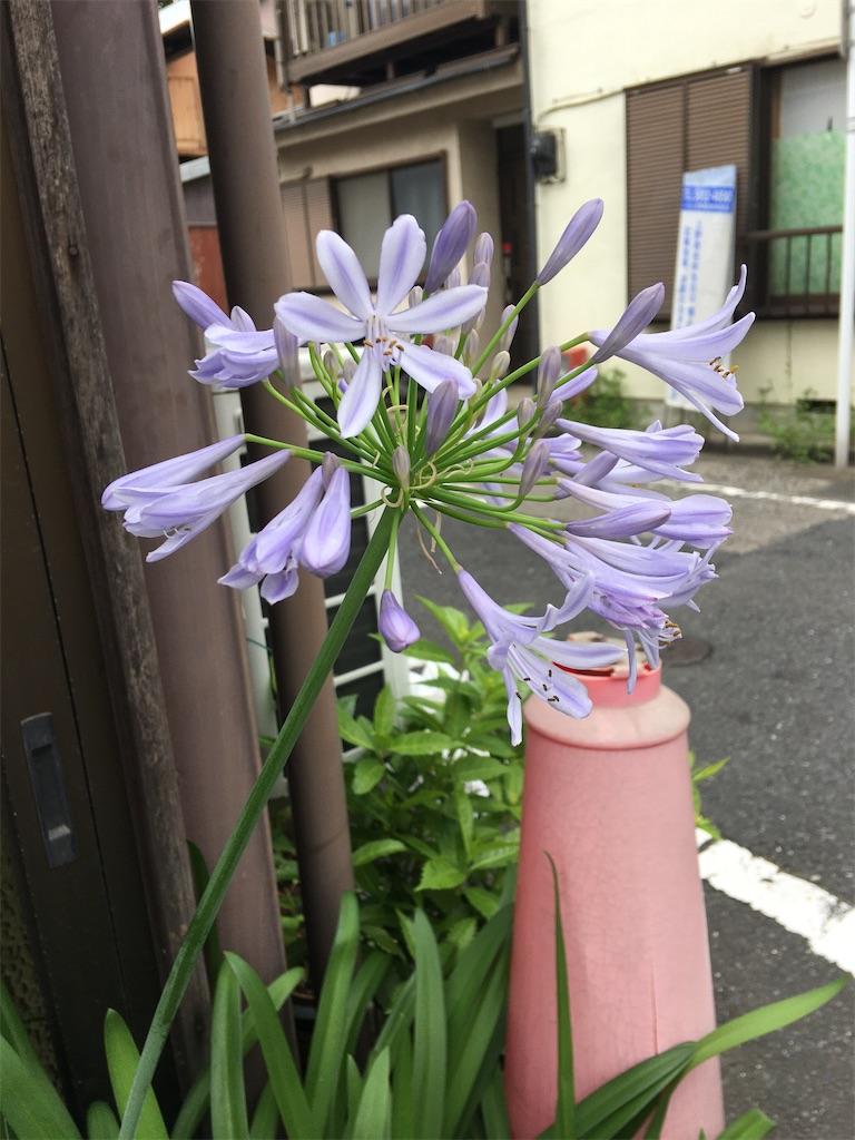 f:id:TokuheiKumagai:20200618225432j:plain