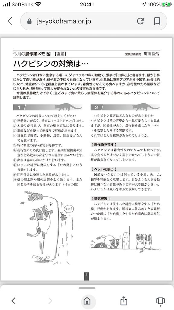 f:id:TokuheiKumagai:20200624204231p:plain