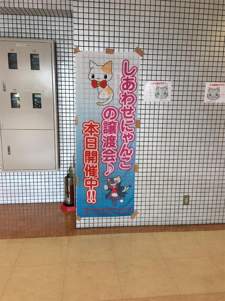 f:id:TokuheiKumagai:20200712200556j:plain