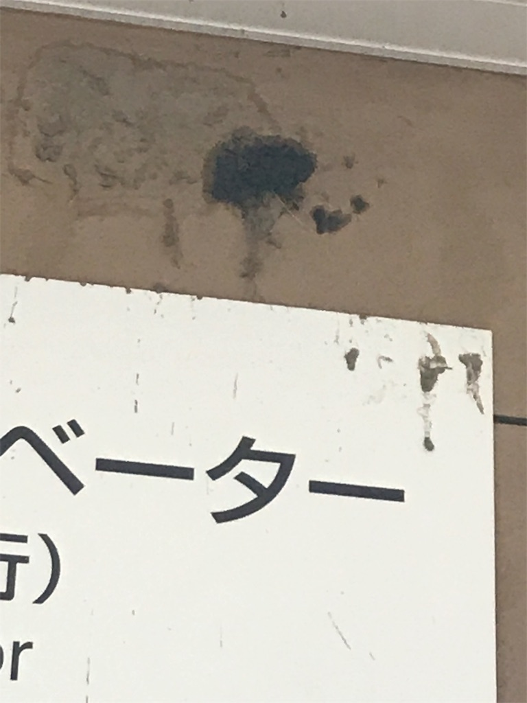 f:id:TokuheiKumagai:20200719230207j:plain