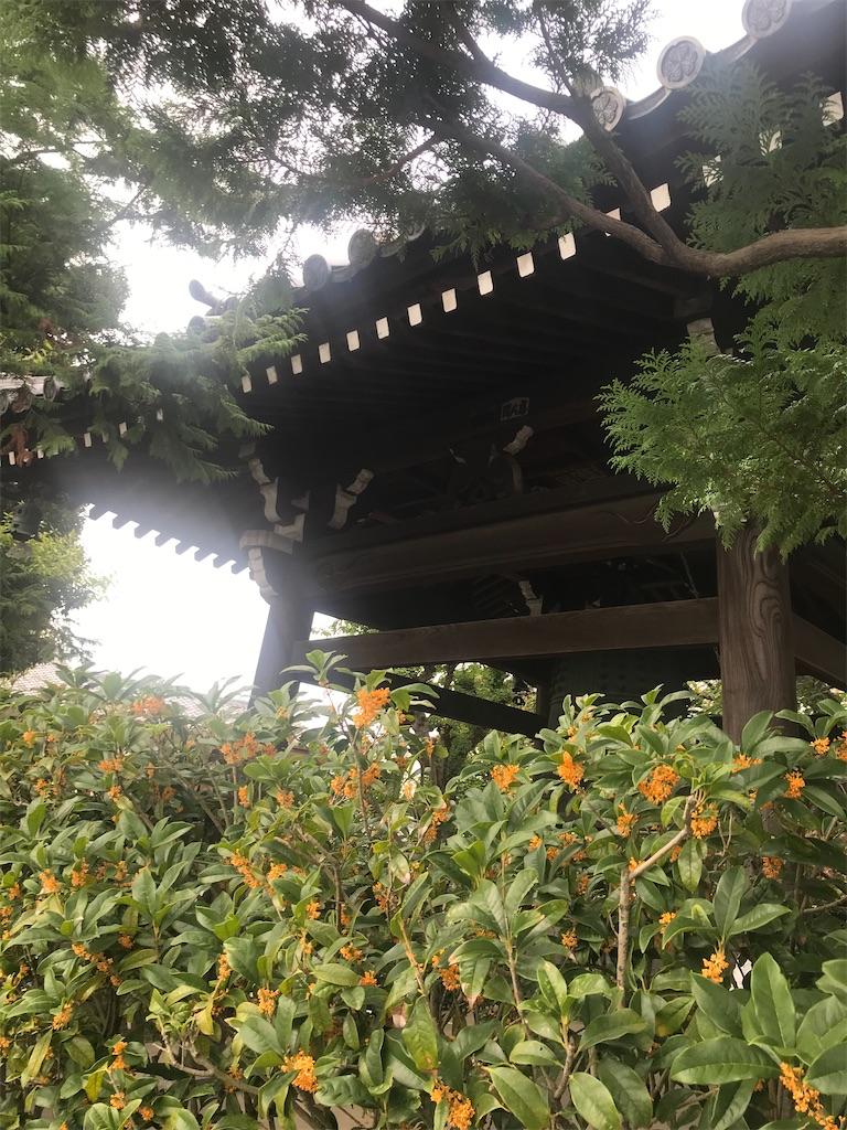 f:id:TokuheiKumagai:20201003221158j:plain
