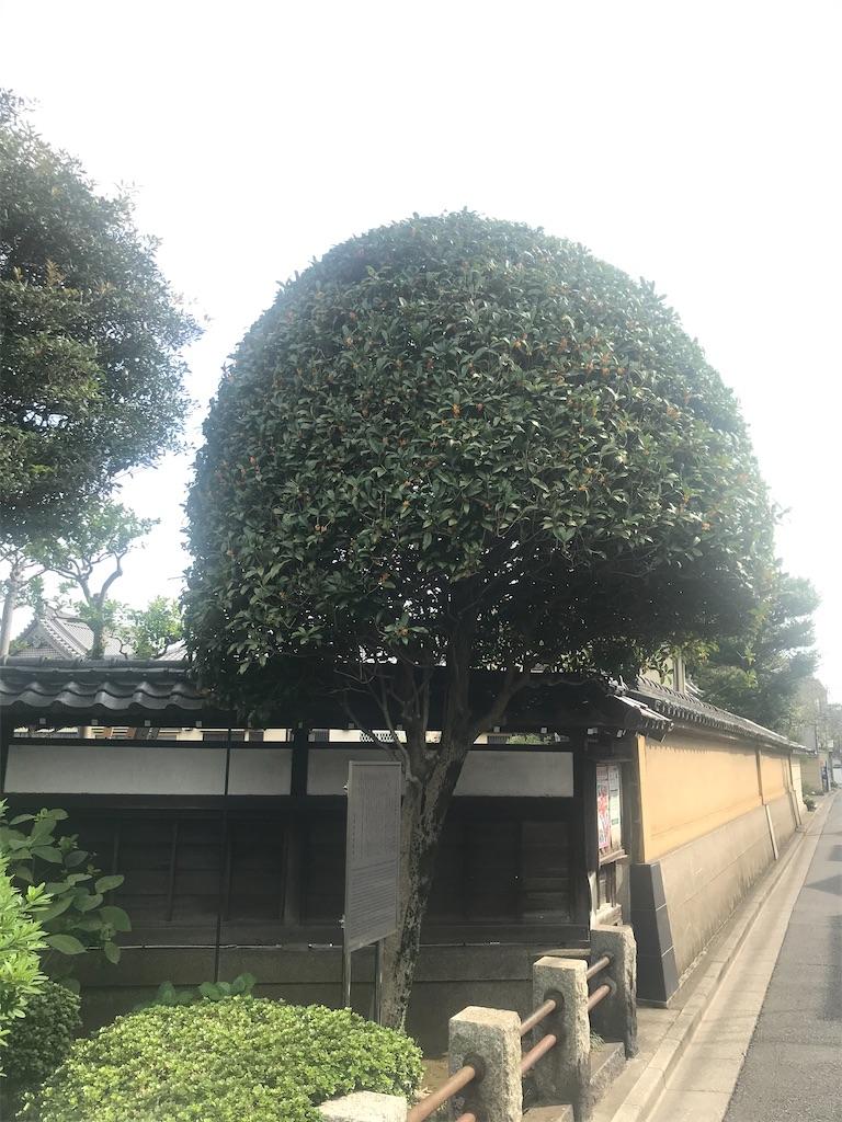 f:id:TokuheiKumagai:20201003221221j:plain